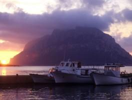 Dia sh 070 Blick zur Isola Tavolara