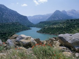 Dia sh 086 Lago del Cedrino