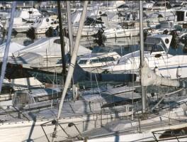 Dia 02-1001 Im Hafen von Alghero