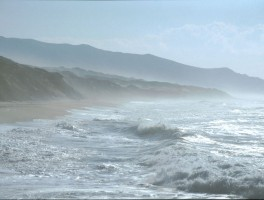 Dia 02-11009 Costa Verde 1994