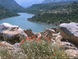 Dia 02-3010 Lago del Cedrino