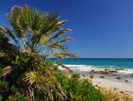 Okt 2011 608  Spiaggia Bidderrosa