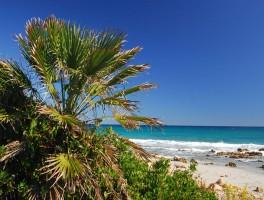 Okt 2011 610  Spiaggia Bidderrosa