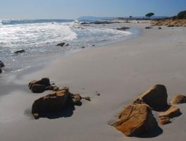 Okt 2011 617  Spiaggia Bidderrosa