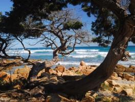 Okt 2011 623  Spiaggia Bidderrosa