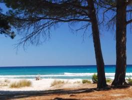 Okt 2011 658 Spiaggia Bidderrosa