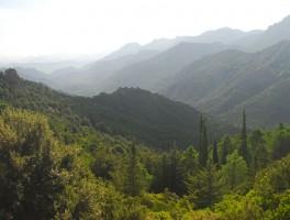 Okt 2010 1298 Tal des Riu Molentina