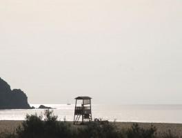 Aug 2012 0022b  Chia