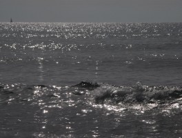 Aug 2012 0056