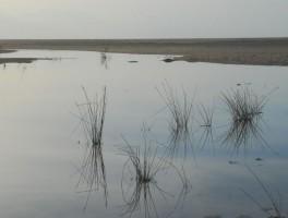Okt 2012 0205